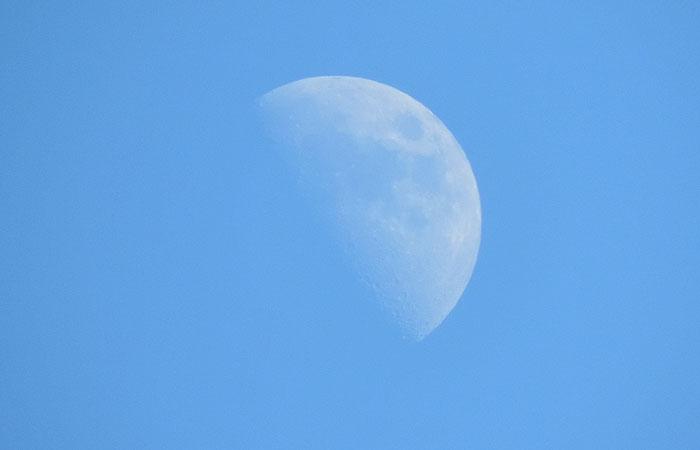 熱田神宮の月