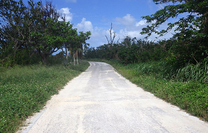 コンドイビーチへの道
