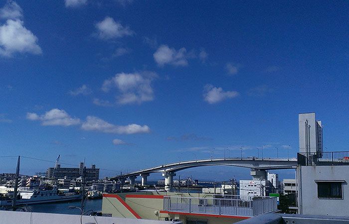 泊港の景色