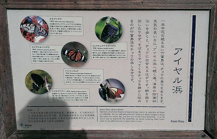 竹富島 アイヤル浜