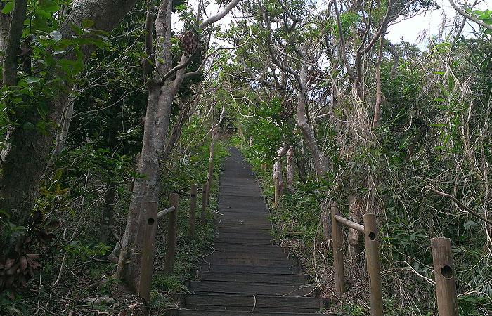 小浜島 大岳登山道