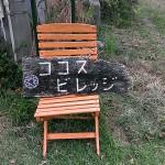 ココスビレッジ 沖縄旅行ブログ 朝梟