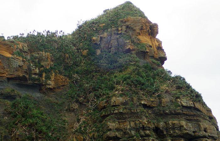 西表島 ゴリラの岩
