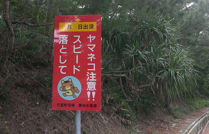 ヤマネコ注意の看板