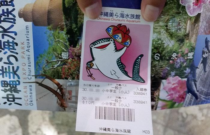 美ら海水族館入館券