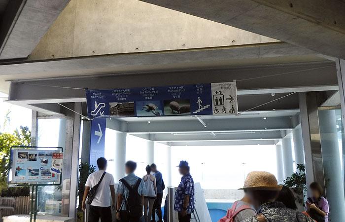 美ら海水族館 出口