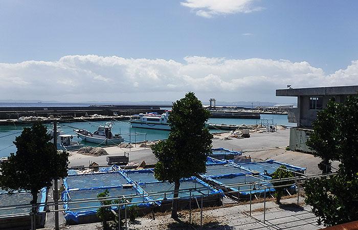 津堅島 港