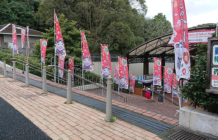 椿祭り会場
