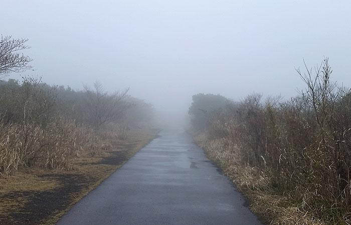 三原山 登山道